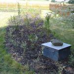 Rekonstrukce zahrad